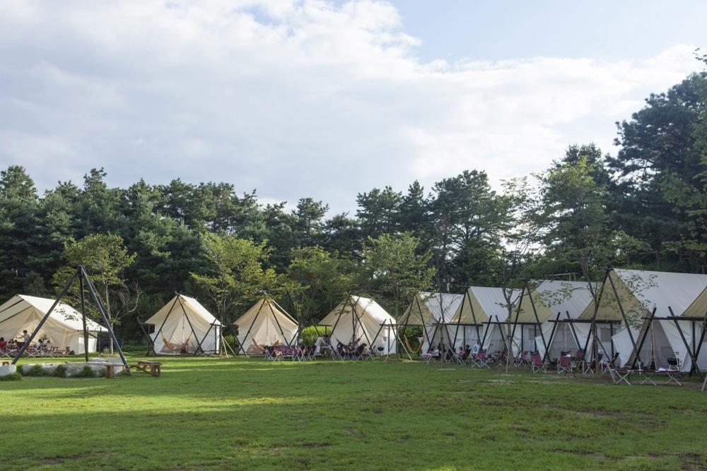 森林户外帐篷酒店