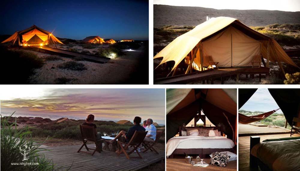 户外帐篷露营