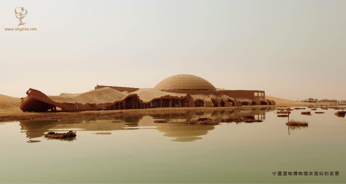 宁夏湿地博物馆景观